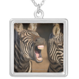 A close-up of a Zebra showing its teeth, Silver Plated Necklace