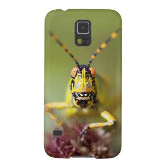 A close-up of an Elegant Grasshopper Galaxy S5 Case