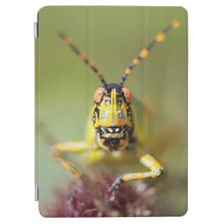 A close-up of an Elegant Grasshopper iPad Air Cover