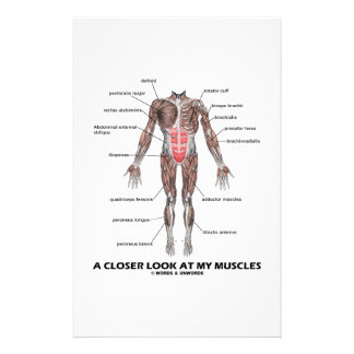 A Closer Look At My Muscles (Anatomy / Anatomical) Stationery Paper