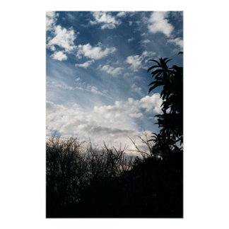 a cloudy backyard poster