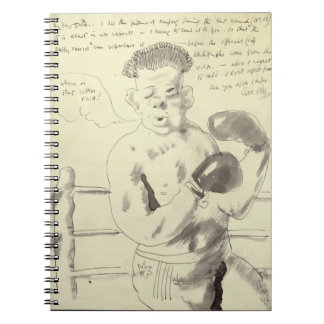 A Collection of Eight Illustrated Letters to his F Notebook