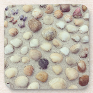A Collection Of Seashells Beverage Coaster