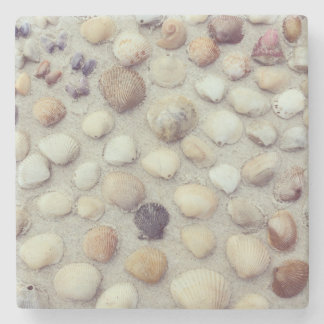 A Collection Of Seashells Stone Coaster