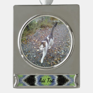 A colorful furry brush pattern silver plated banner ornament