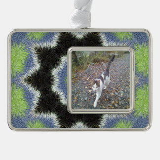 A colorful furry brush pattern silver plated framed ornament