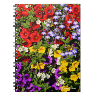 A Colorful Pastiche of Summer Annual Flowers Spiral Notebook
