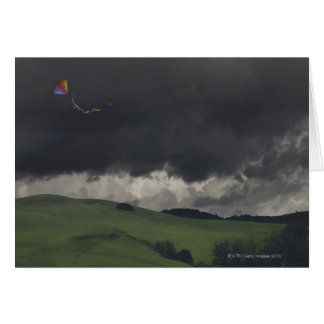 A colorful rainbow kite drifts cheerfully card