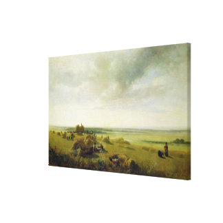 A Corn Field Canvas Print