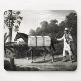 A Cotton Carrier, from 'Travels in Brazil' Mouse Mat