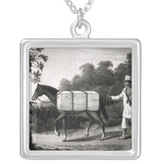 A Cotton Carrier, from 'Travels in Brazil' Silver Plated Necklace