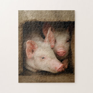 A couple of curious piglets stick their heads jigsaw puzzle