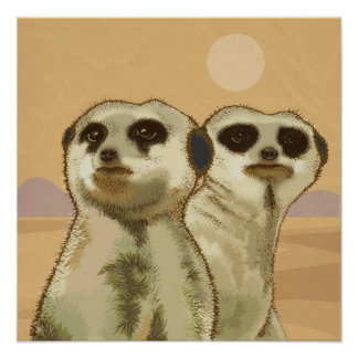 A couple of Meerkats Poster