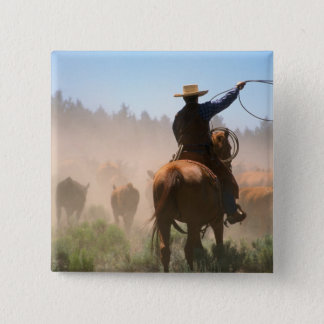 A cowboy out working the herd on a cattle 15 cm square badge
