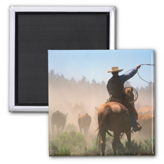 A cowboy out working the herd on a cattle square magnet
