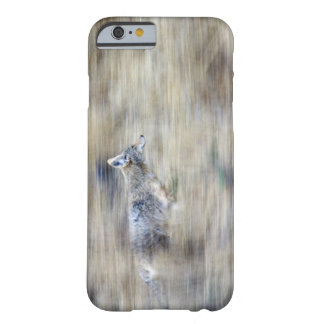 A coyote runs through the hillside blending into barely there iPhone 6 case