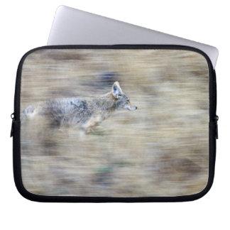 A coyote runs through the hillside blending into computer sleeves