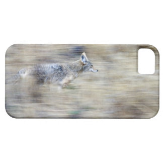 A coyote runs through the hillside blending into iPhone 5 cover
