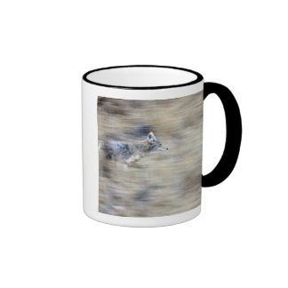 A coyote runs through the hillside blending into mug