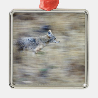 A coyote runs through the hillside blending into Silver-Colored square decoration