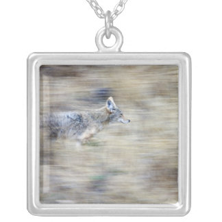 A coyote runs through the hillside blending into square pendant necklace