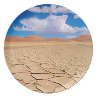 A cracked desert plain plate