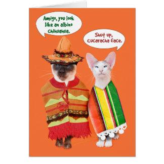 A Cranky Cats' Cinco de Mayo Greeting Card