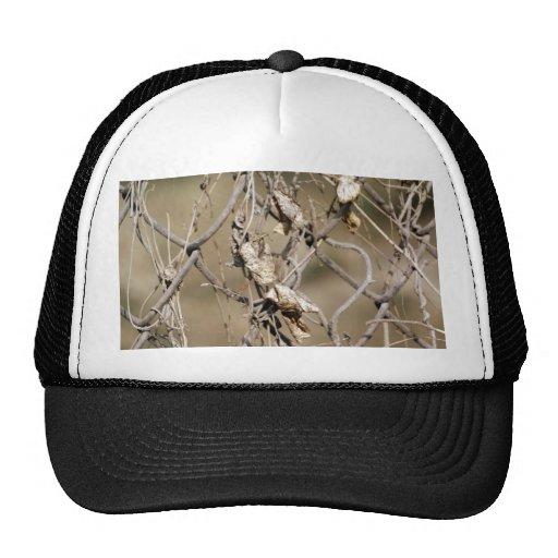 A cross link fence along with leaves mesh hats