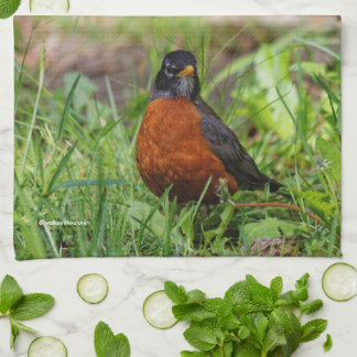 A Curious and Hopeful American Robin Tea Towel