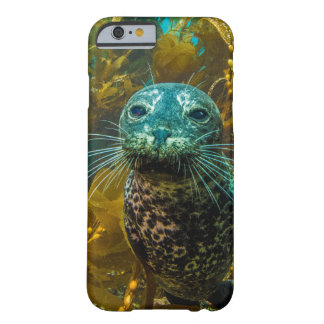 A Curious Harbor Seal Kelp Forest | Santa Barbara Barely There iPhone 6 Case
