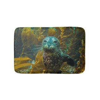 A Curious Harbor Seal Kelp Forest | Santa Barbara Bath Mats