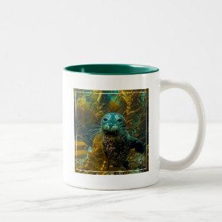A Curious Harbor Seal Kelp Forest | Santa Barbara Two-Tone Coffee Mug