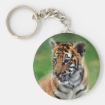 A cute baby tiger basic round button key ring