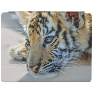 A cute baby tiger iPad smart cover