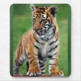 A cute baby tiger mouse mat