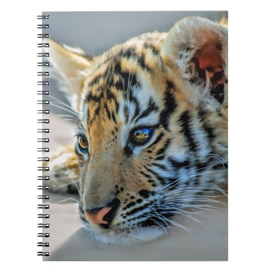 A cute baby tiger notebooks