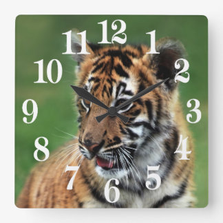 A cute baby tiger square wall clock