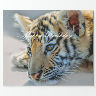 A cute baby tiger wrapping paper