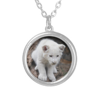 A cute baby white lion silver plated necklace