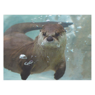 A cute Brown otter swimming in a clear blue pool Tablecloth
