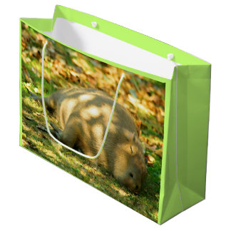 A Cute Capybara Dreams in the Summer Sun Large Gift Bag