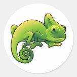 A cute chameleon lizard