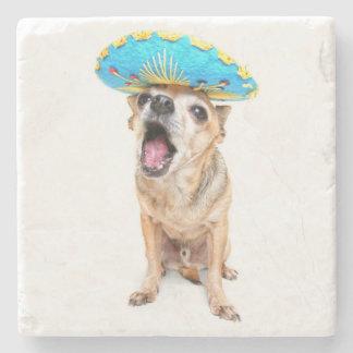 A Cute Chihuahua In A Halloween Costume Stone Coaster
