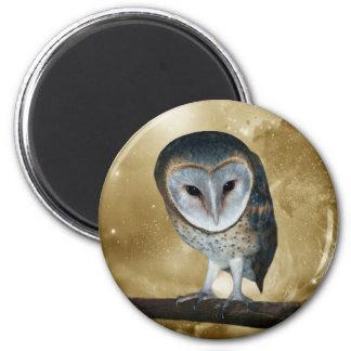 A Cute little Barn Owl Fantasy Magnet