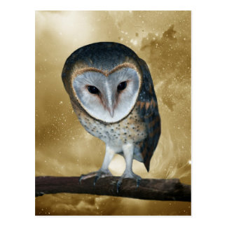A Cute little Barn Owl Fantasy Postcard