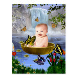 A cute nature baby postcard