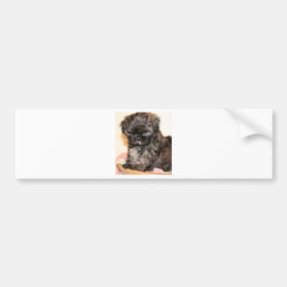 A Cute Shih Tzu Pup makes this product adorable Bumper Sticker