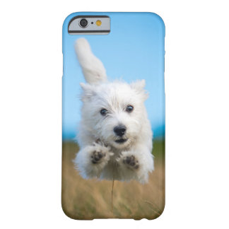 A Cute West Highland Terrier Puppy Running Barely There iPhone 6 Case
