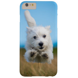 A Cute West Highland Terrier Puppy Running Barely There iPhone 6 Plus Case