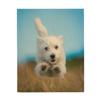 A Cute West Highland Terrier Puppy Running Wood Print